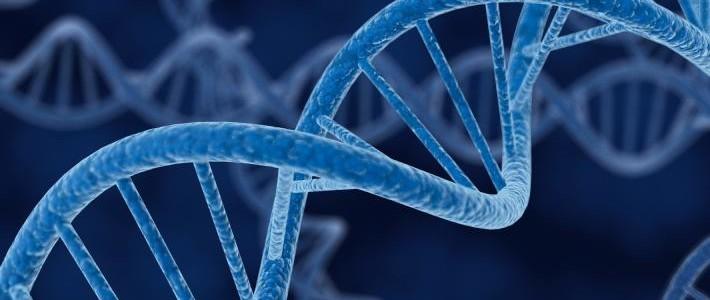 """Progetto """"Gene Signature"""", la firma genetica dei tumori urologici."""